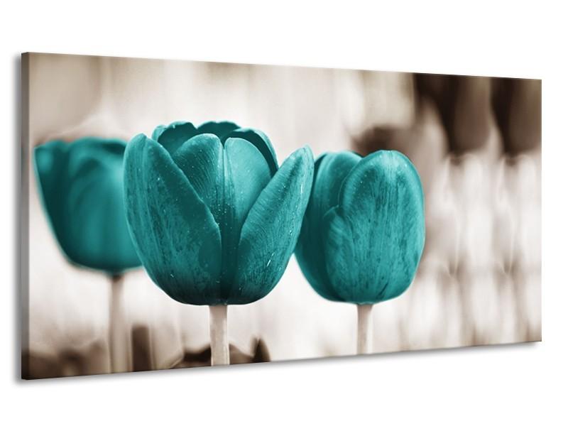 Canvas Schilderij Tulpen, Bloemen | Turquoise, Sepia | 170x90cm 1Luik