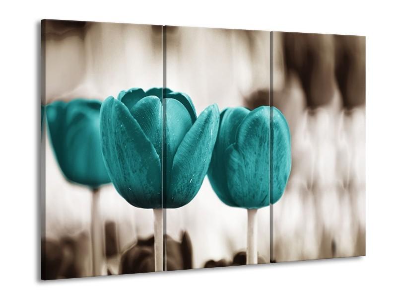 Glasschilderij Tulpen, Bloemen | Turquoise, Sepia | 60x90cm 3Luik