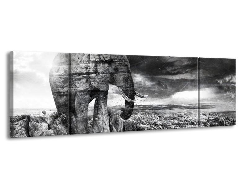Glasschilderij Modern, Olifant | Zwart, Wit, Grijs | 170x50cm 3Luik