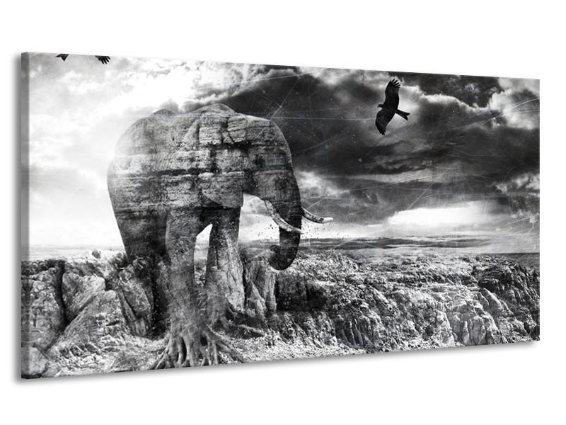 Canvas Schilderij Modern, Olifant | Zwart, Wit, Grijs | 170x90cm 1Luik