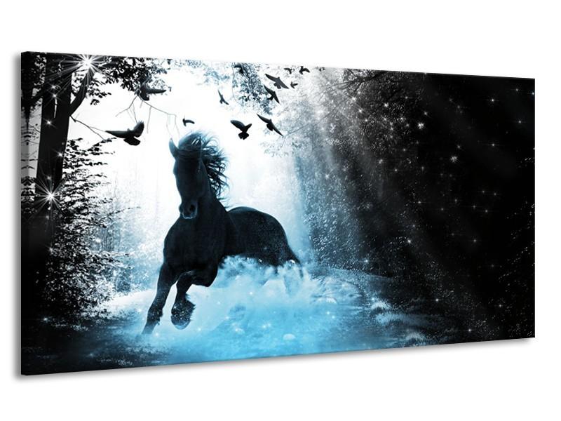 Canvas Schilderij Paard, Modern | Blauw, Zwart, Wit | 170x90cm 1Luik