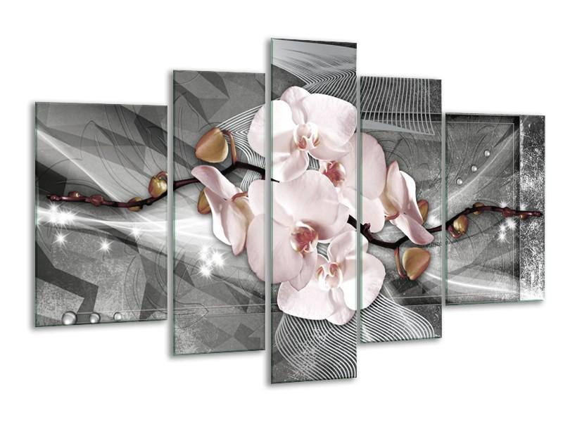 Glasschilderij Orchidee, Bloemen | Grijs | 170x100cm 5Luik