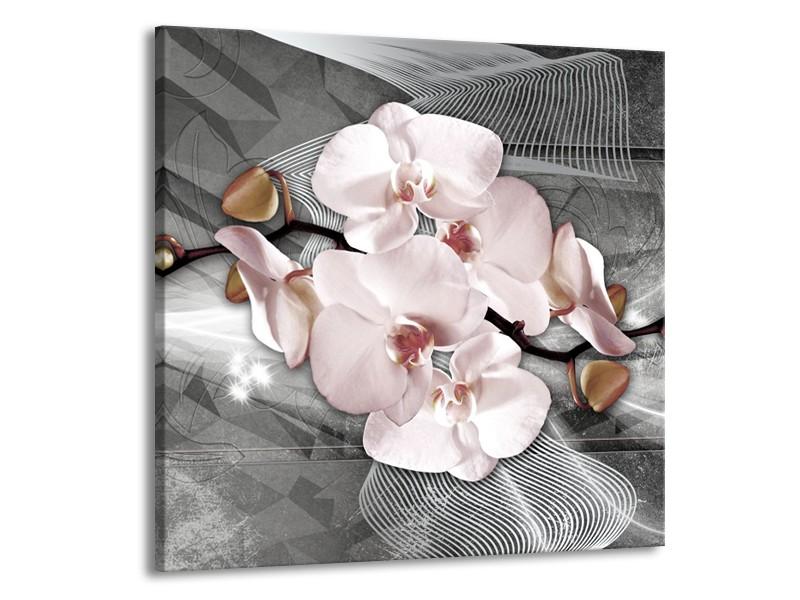 Glasschilderij Orchidee, Bloemen   Grijs   50x50cm 1Luik