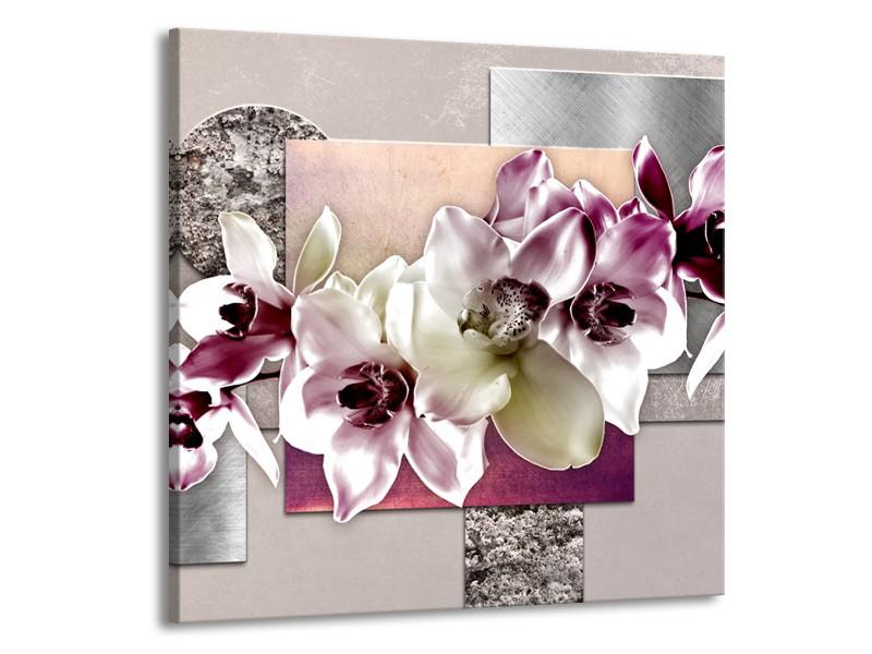 Canvas Schilderij Orchidee, Bloemen | Paars, Grijs | 70x70cm 1Luik