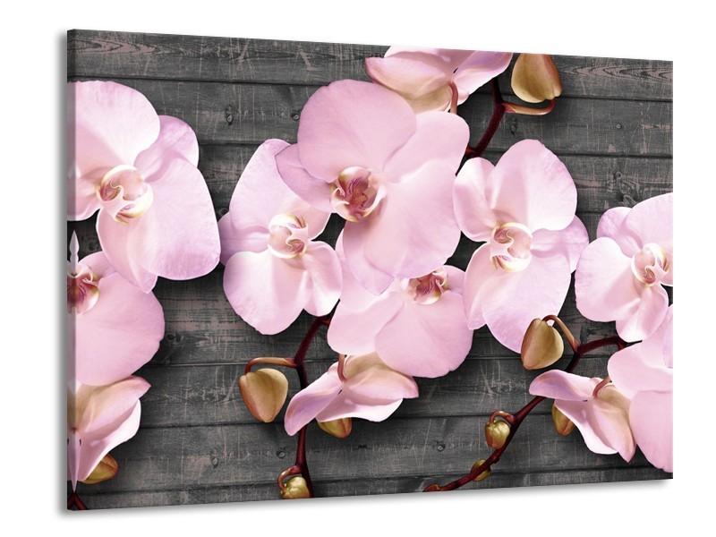 Glasschilderij Orchidee, Bloemen | Grijs, Roze | 100x70cm 1Luik