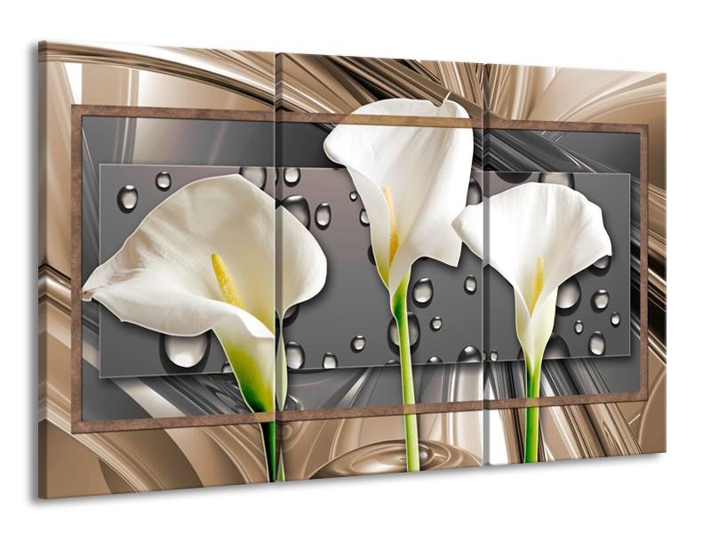 Glasschilderij Bloemen, Modern   Grijs, Bruin   165x100cm 3Luik