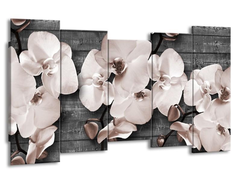 Glasschilderij Orchidee, Bloemen   Grijs   150x80cm 5Luik