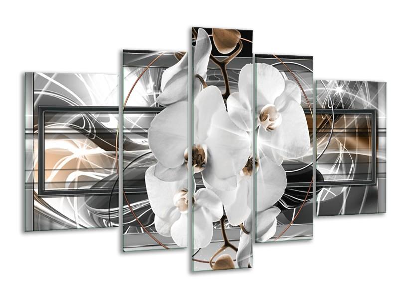 Glasschilderij Orchidee, Bloemen | Zilver, Wit | 170x100cm 5Luik