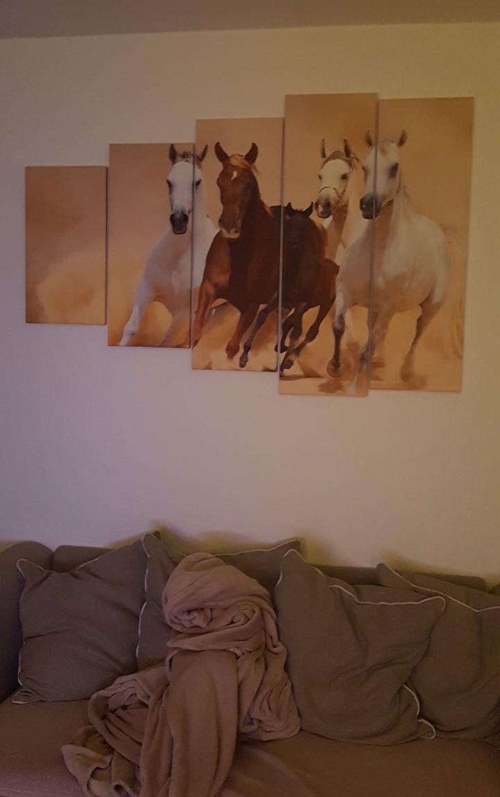 Canvas schilderij 5 luik Paarden schilderijenArt.NL